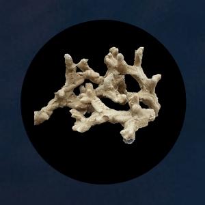 solvireef branch reef rocks